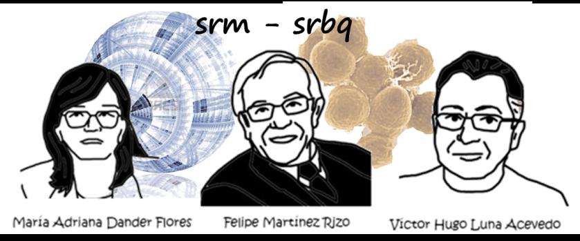 srm-srbq-2